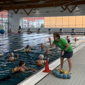 GRAUE SAALEHAIE bei der Wassergymnastik